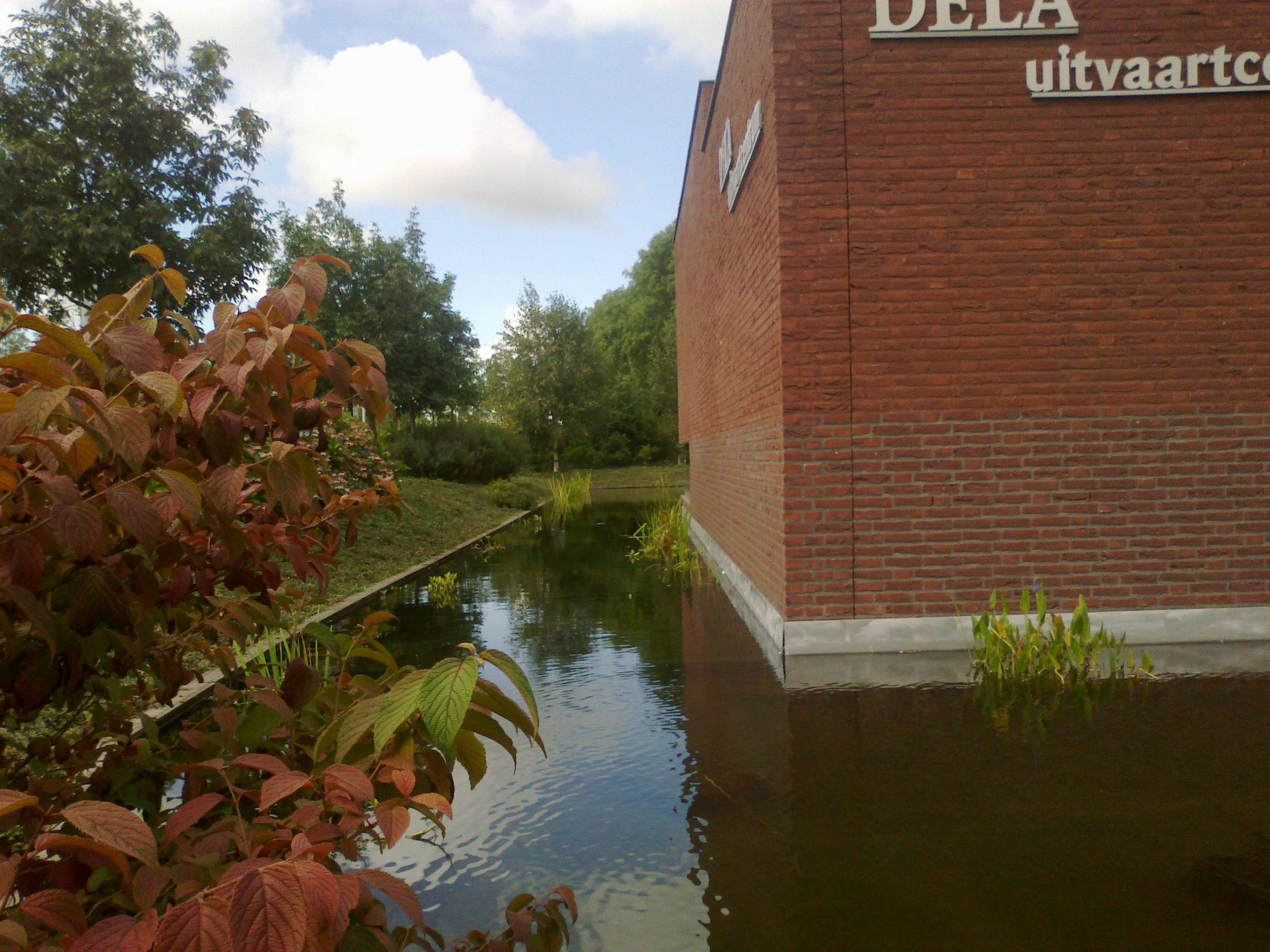 Renovatie DELA-vijver te Breda